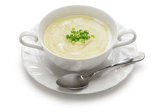 Vichyssoise, cold potato soup. American summer cuisine isolated on white background royalty free stock images