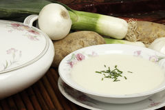 Vichyssoise Soup Stock Images