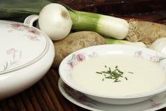 Vichyssoise Soup Stock Images