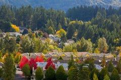 Vicinanza suburbana nordamericana dell'alloggio misto nella caduta Fotografia Stock Libera da Diritti