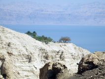 In the vicinity of the Dead Sea Royalty Free Stock Photos