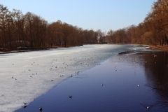 Vicino ad una foresta congelata del lago in molla in anticipo fotografie stock libere da diritti