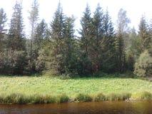 Vicino al fiume Fotografie Stock Libere da Diritti