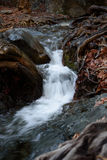Vicino alla cascata di Millomeris Immagini Stock