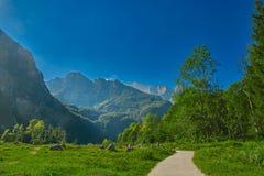 Vicino alla fermata di Saletalm del lago Konigsee in Baviera tedesca Immagini Stock
