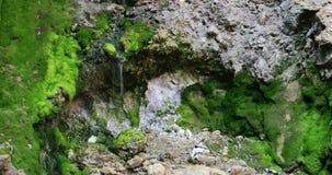 Vicino alla sorgente di acqua calda di Pangururan video d archivio