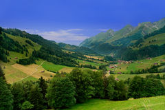 Vicino a Gruyeres, la Svizzera Immagine Stock Libera da Diritti