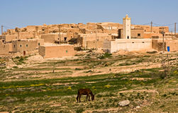 Vicino vivente il deserto Fotografia Stock Libera da Diritti
