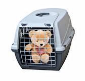 Vicious caged bear Royalty Free Stock Photography