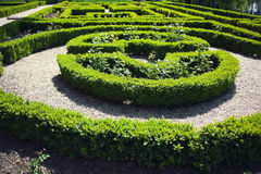 Vicoli del giardino Fotografia Stock Libera da Diritti