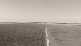 Vicolo attraverso i grandi campi