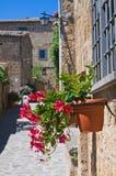Vicolo. Civita di Bagnoregio. Il Lazio. L'Italia. Fotografia Stock