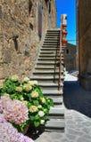 Vicolo. Civita di Bagnoregio. Il Lazio. L'Italia. Immagine Stock Libera da Diritti