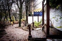 Vicolo con i banchi nel parco di dendro in Kropyvnytskyi, Ucraina Fotografie Stock