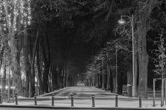 Vicolo dalla città europea, orario invernale di notte, Bucarest Romania Fotografia Stock