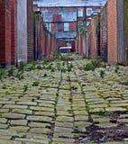 Vicolo del cobblestone del centro urbano Immagine Stock