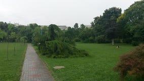 Vicolo del parco a Bucarest, Romania Fotografia Stock Libera da Diritti