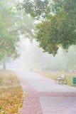 Vicolo del parco nella nebbia Fotografia Stock Libera da Diritti