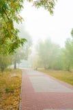 Vicolo del parco nella nebbia Fotografie Stock Libere da Diritti