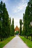 Vicolo dell'albero Fotografia Stock