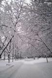 Vicolo della neve Fotografie Stock