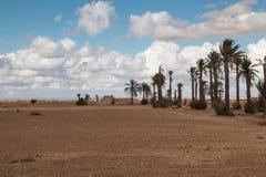 Vicolo della palma, Marocco Immagini Stock