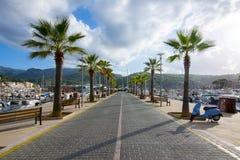 Vicolo della palma in porto Soller, Mallorca, Balearic Island, Spagna immagine stock libera da diritti