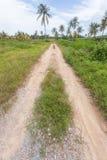 Vicolo della strada in campagna con erba e suolo nel giorno soleggiato immagine stock