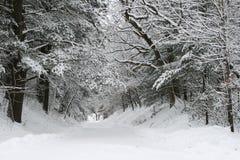 Vicolo dello Snowy immagini stock libere da diritti