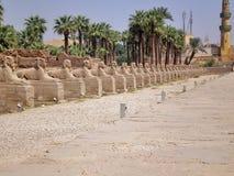 Vicolo dello Sphinx Fotografia Stock