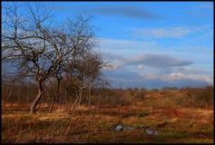 Vicolo di Apple nelle colline Fotografia Stock