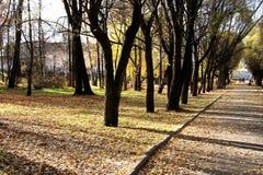 Vicolo di autunno Fotografia Stock Libera da Diritti