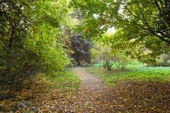 Vicolo di autunno al giardino botanico Fotografia Stock Libera da Diritti