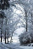 Vicolo di inverno Fotografie Stock
