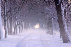 Vicolo di inverno dello Snowy in sosta fotografia stock