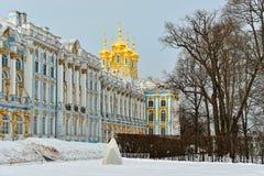 Vicolo di inverno e palazzo di Catherine a Pushkin Immagine Stock Libera da Diritti