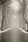 Vicolo di inverno a Odessa, Ucraina. Fotografia Stock