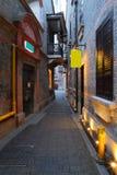Vicolo di Shanghai Xintiandi fotografie stock
