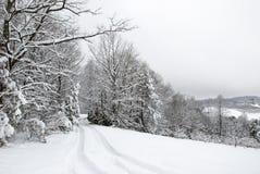 Vicolo di Snowy Fotografia Stock