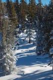 Vicolo di Snowy Fotografia Stock Libera da Diritti