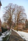 Vicolo di Snowy in un parco Carthusian Immagini Stock