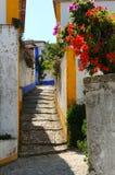 Vicolo e fiori portoghesi Immagini Stock Libere da Diritti