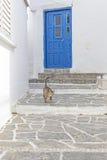 Vicolo greco tipico con una porta, un gatto ed i punti Fotografie Stock Libere da Diritti