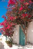 Vicolo greco tradizionale sull'isola di Sifnos Fotografia Stock