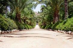 Vicolo nel giardino di Alhambra Immagine Stock