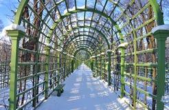 Vicolo nel giardino di estate in StPetersburg Fotografie Stock Libere da Diritti