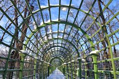 Vicolo nel giardino di estate in StPetersburg Immagine Stock Libera da Diritti