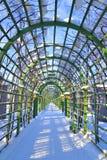 Vicolo nel giardino di estate in StPetersburg Immagini Stock
