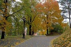 Vicolo nel parco in autunno Immagini Stock