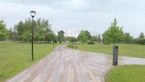 Vicolo nel parco dopo la pioggia archivi video